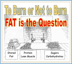 dr len lopez, to burn or not to burn fat is the questions